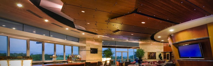 T-Bar Ceilings and Speciality Ceiling Systems